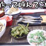 【簡単9品】野菜ソムリエOLが冷蔵庫の余り物で作る即席レシピ。【作り置き】【26歳OLの料理記録】【料理ルーティン】
