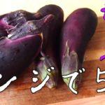 【ナスレシピ5選!】簡単で美味しいナスのレシピです