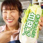【白菜大量消費】1/4株使い切り!簡単3品、白菜定食の作り方【主菜と副菜】