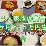 【節約】料理が苦手な主婦が1ヶ月の食費3.5万円を目指します/18~21日目