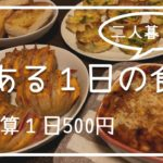 【とある1日の食事】予算500円!節約料理を楽しむ主婦の自炊記録Vlog/料理ルーティン【二人暮らし】