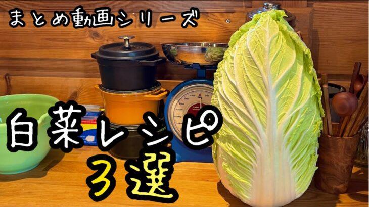 【白菜大量消費】簡単で美味しく白菜丸ごと使い切る|白菜レシピ動画まとめて3つ|1年前の動画(編集)に汗|料理教室