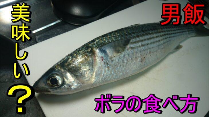 【魚料理レシピ】 簡単料理 男飯 ボラの食べ方