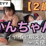 【2歳児のルーティン】天使!?悪魔!?イヤイヤ期突入・ママ・主婦・ワンオペ・vlog