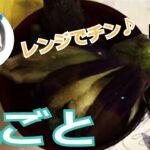 なす丸ごとレンジでチン!簡単レシピ【料理系VTuber】