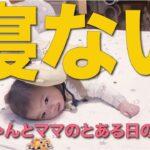 【赤ちゃんルーティン】午前中全く寝ない赤ちゃんとママのとある日