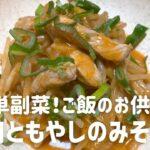 豚肉ともやしのみそ炒めの作り方・レシピ 簡単副菜!ご飯にかけてもおいしいよ!