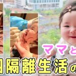 【中国隔離生活ルーティン】赤ちゃん(生後6か月)とママの隔離生活に1日密着 24Hワンオペ育児 | 跟宝宝隔离生活的一天