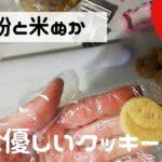 [VLOG]米ぬか(ライスブラン)クッキー  普通の主婦の巣ごもりシンプルな生活[節約料理] 主婦の日常 | ライフスタイル | 全粒粉 | 簡単レシピ |