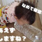 【ママの一日 / 生後11ヶ月女の子 / 子育てルーティン】 好奇心旺盛な娘から目が離せない!