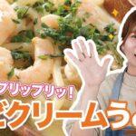 【ズボラ飯】】エビクリームうどんを作ってみた!【料理動画・簡単レシピ
