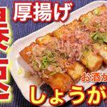 【簡単男飯】お酒がすすむ!厚揚げのしょうが焼きの作り方〘簡単レシピ付〙【おつまみ】
