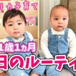 【双子1歳1ヵ月】最近の1日のルーティン♡バイリンガル育児♫ アメリカ子育て|3児ママ|国際結婚