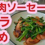 【野菜料理レシピ】魚肉ソーセージとニラ炒めの作り方♪簡単節約料理