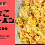 【中学受験生のための簡単料理レシピ】卵チャーハンをつくってみた