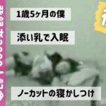 【後編】1歳5ヶ月/ルーティン!ノーカット寝かしつけ(添い乳ママ)