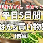 【食費月2万】平日5日間の節約晩ごはん 食費2万の節約主婦。普段、何買ってるの?【前編】
