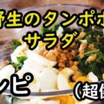 野生【たんぽぽサラダ】のレシピ/欧州の健康料理の簡単な作り方