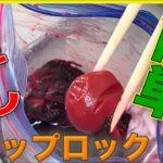 【梅干し】ジップロックで簡単に作るコツ!プロの料理人の裏技教えますよ!