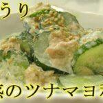 はまった!『きゅうりのツナマヨ和え』タレが絶妙!ポリポリとまらない!料理 レシピ 簡単
