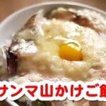 聞き流し料理レシピ (簡単料理レシピ ☆ サンマ山かけごはん)