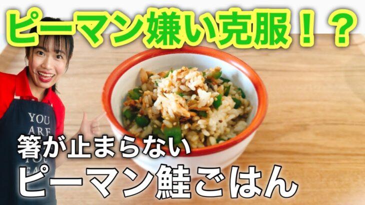 【抗酸化レシピ】簡単すぎる鮭とピーマンの混ぜご飯☆ご飯が無限にすすむ【料理】