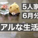 [家計管理 節約#8]リアルな生活費公開/平凡な1週間/6月分スタート