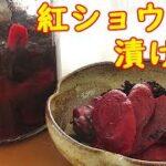 昔風な『自家製紅ショウガ』失敗なく最も簡単に漬けれる方法です!長期保存OK!料理 レシピ 簡単
