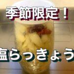 【簡単レシピ】美味しい料理!季節限定!塩らっきょう