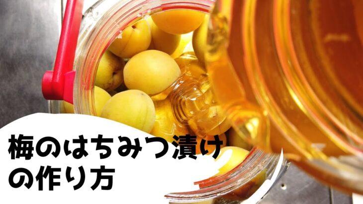 梅のはちみつ漬けの作り方・レシピ【ばあちゃんの料理教室】
