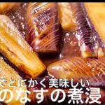 【なすの煮浸し】簡単で美味しすぎる副菜レシピ 料理