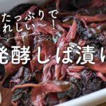 【乳酸菌たっぷり!】発酵しば漬けのレシピ・作り方