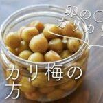 小梅のカリカリ漬け(カリカリ梅)のレシピ・作り方