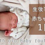 【生後1ヶ月】赤ちゃんとの一日はどんな感じ?ママと赤ちゃんのルーティンを24時間密着!【女の子ベビー】