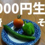 【節約】食費1週間2人で5000円チャレンジその3完結編【シニアVlog】