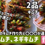 韓国家庭料理)ニラキムチとネギキムチ作り方(サムギョプサルやご飯が進む2品キムチレシピ)