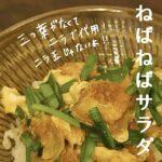献立レシピ【簡単!20分で3品】親子丼と納豆きゅうりと味噌汁の日