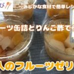 【時短 簡単 ミニレシピ#46】フルーツ缶詰とりんご酢で甘味を抑えた『大人のフルーツゼリー』