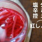 【減塩】紅生姜の作り方/赤梅酢で作る新生姜の紅しょうがレシピ/料理Vlog