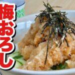 【超簡単】チキンカツでリメイク料理!夏らしくサッパリおいしい!究極のアレンジ丼