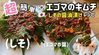 超簡単!エゴマのキムチ(しその醤油漬け)作ってすぐ食べれるレシピ