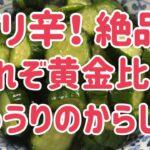 【料理】【簡単】【大家族】【大量消費】きゅうりのからし漬レシピ