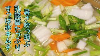 [韓国料理]乳酸菌たっぷり すっぱ水キムチ 本格レシピ 簡単
