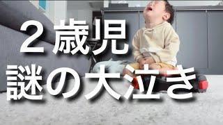 【Vlog】偏食でYouTubeばっかりの日|2歳差育児|3児ママ|主婦