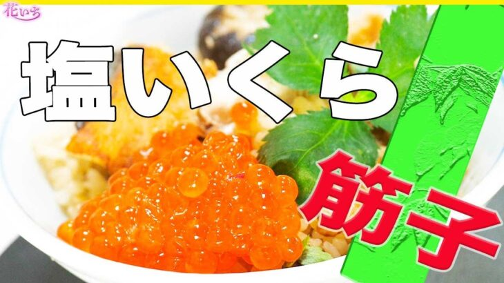 本格【プロのレシピ】筋子と塩いくら簡単に作るコツ!美味しく出来ます!