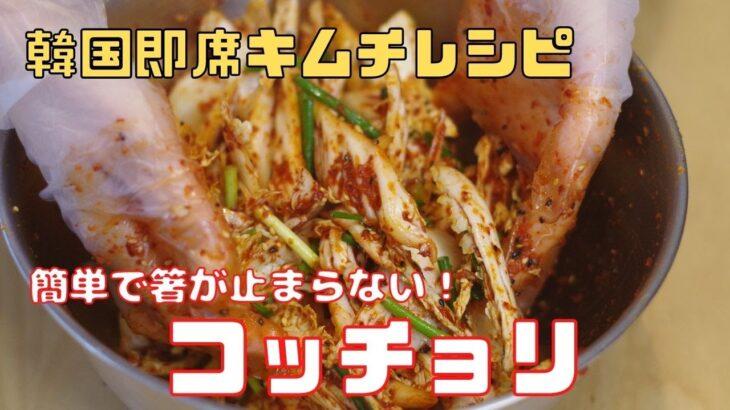 [韓国料理]コッチョリ/即席キムチ/無限白菜/簡単レシピ/キムチ/おつまみ
